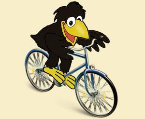 Rabe Fahrradfahren
